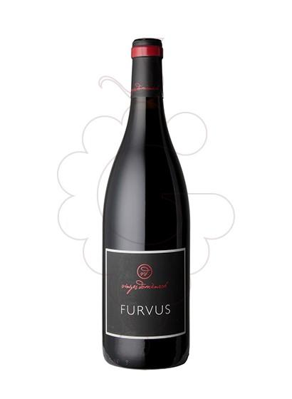 Foto Furvus  vi negre