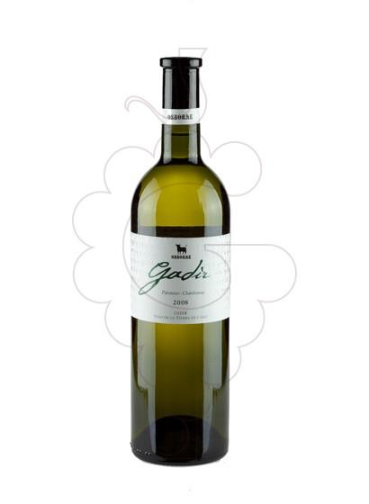 Foto Gadir Blanc vi blanc