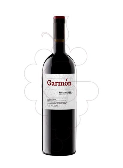 Foto Garmón vi negre