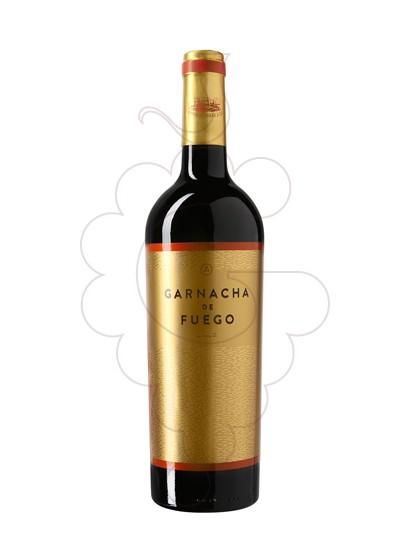 Foto Garnacha de Fuego  vi negre