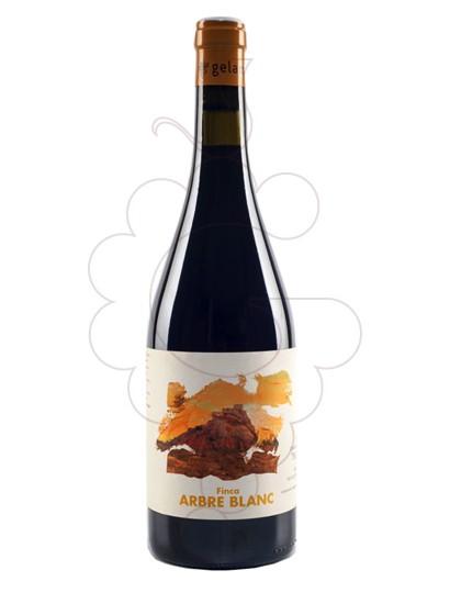 Foto Gelamà Finca Arbre Blanc vi negre