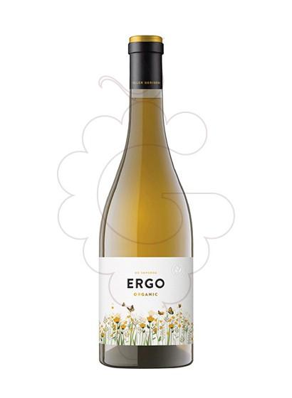Foto Ergo de Gerisena Blanc vi blanc