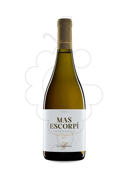 Foto Gramona Chardonnay Mas Escorpi vi blanc