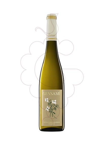 Foto Gramona Gessami (mini) vi blanc