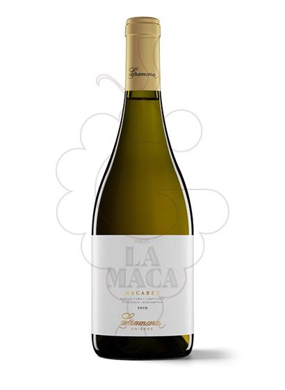 Foto Gramona La Maca vi blanc