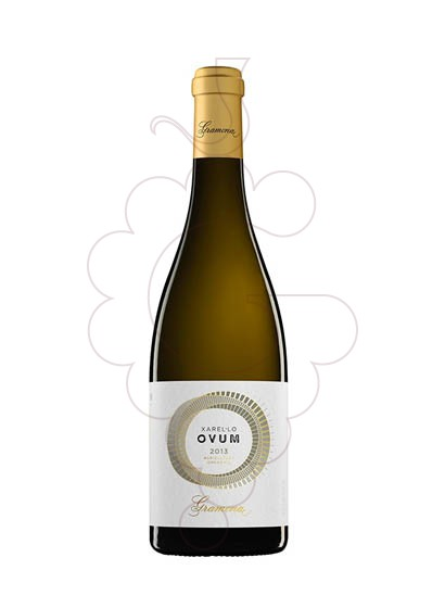 Foto Gramona Ovum vi blanc