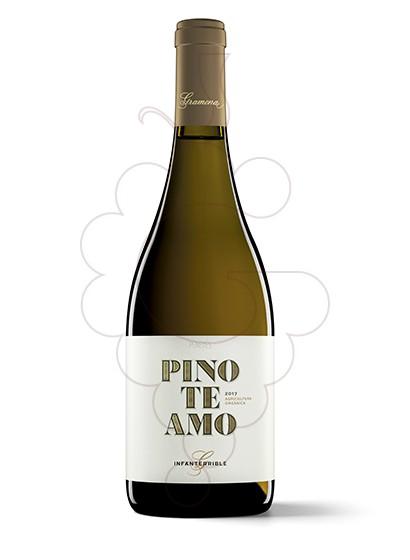 Foto Gramona Pinoteamo vi blanc