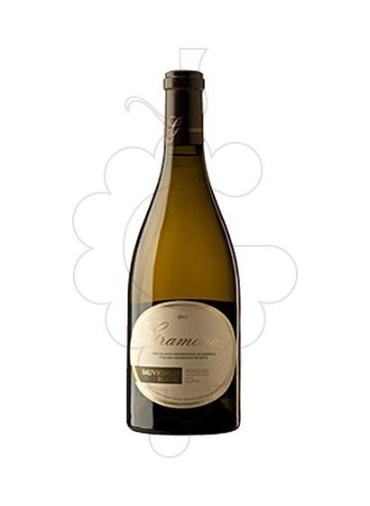 Foto Gramona Sauvignon Blanc Magnum vi blanc