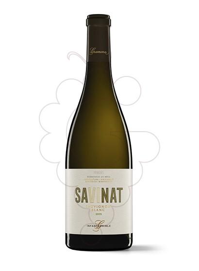 Foto Gramona Savinat Sauvignon Blanc vi blanc