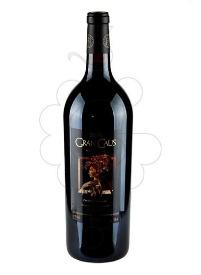 Foto Gran Caus Negre Magnum vi negre