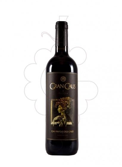 Foto Gran Caus Negre vi negre
