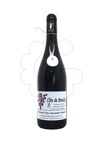 Foto Domaine des Grandes Vignes Côte de Brouilly vi negre