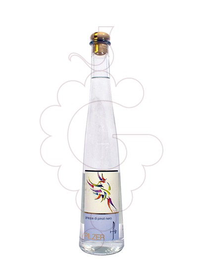 Foto Grappa Grappa Pilzer di Pinot Nero