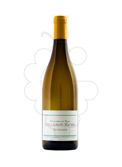 Foto Guillemot-Michel Viré-Clessé Quintaine vi blanc