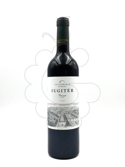 Foto Iugiter vi negre