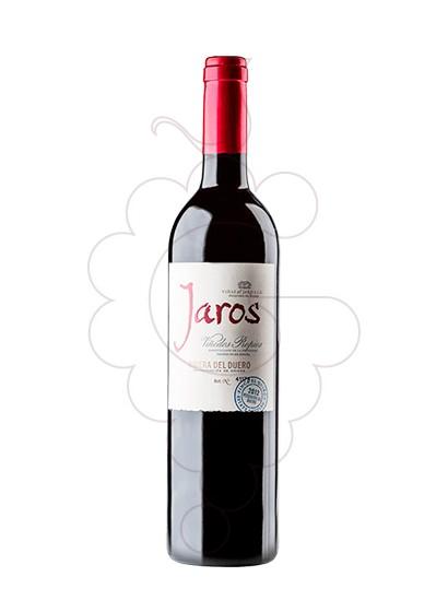 Foto Jaros vi negre