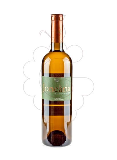 Foto Joncaria Blanc Moscat Barrica vi blanc