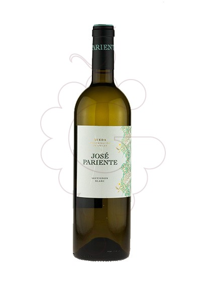 Foto José Pariente Sauvignon Blanc vi blanc