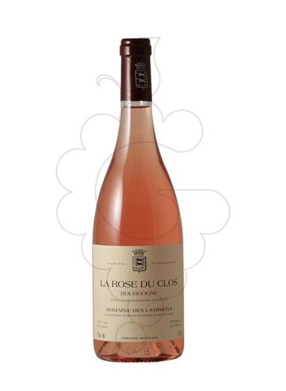 Foto La Rose du Clos Lambrays vi rosat