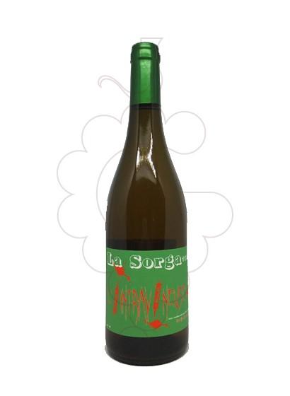 Foto La Sorga Intravineuse Blanc vi blanc