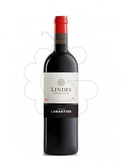 Foto Lindes de Remelluri (Labastida) vi negre