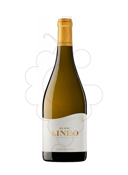 Foto Lineo blanc 2017 magnum vi blanc