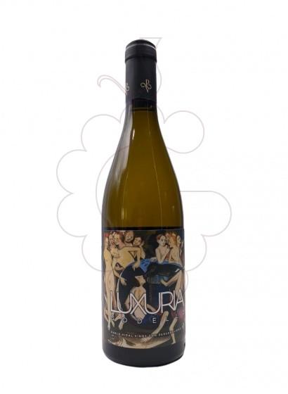 Foto Luxuria vi blanc