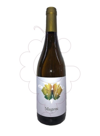 Foto Magenc vi blanc