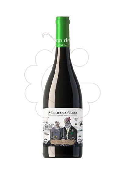 Foto Manar dos Seixas vi blanc
