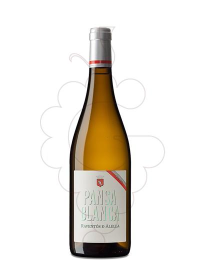 Foto Raventós d'Alella Pansa Blanca vi blanc