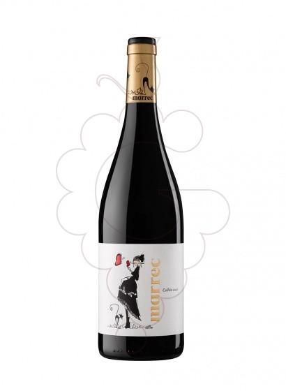Foto Marrec Negre vi negre