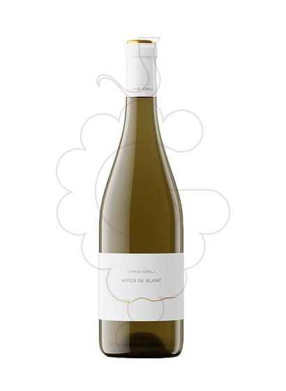 Foto Mas Geli Blanc vi blanc