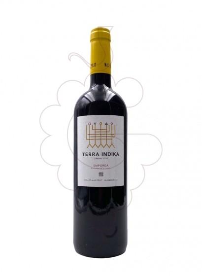 Foto Mas Pòlit Terra Indika vi negre