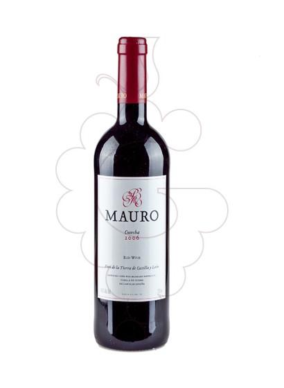 Foto Mauro vi negre