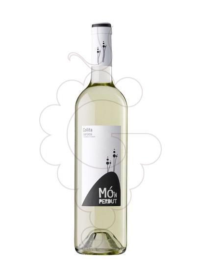 Foto Mon Perdut Blanc vi blanc