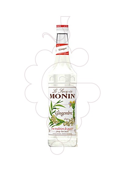 Foto Xarops Monin Gingembre (s/alcohol)
