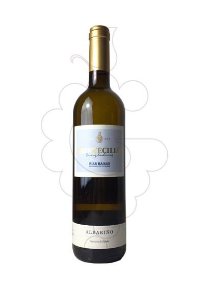 Foto Montecillo Singladuras Albariño vi blanc