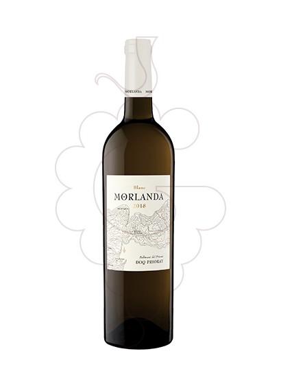 Foto Morlanda Blanc vi blanc
