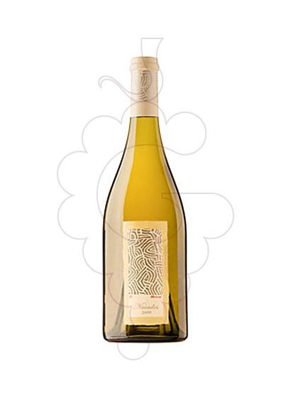 Foto Naiades vi blanc