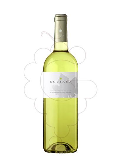 Foto Nuviana Blanc vi blanc