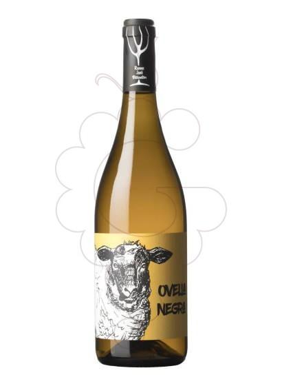 Foto Ovella Negra vi blanc