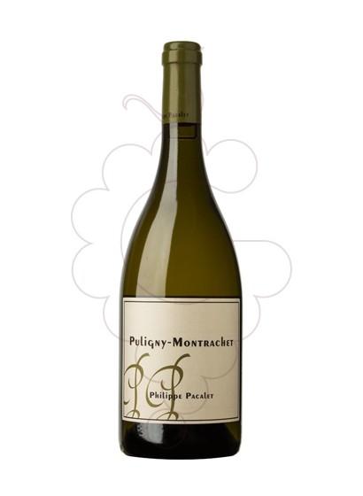 Foto Pacalet Puligny-Montrachet vi blanc