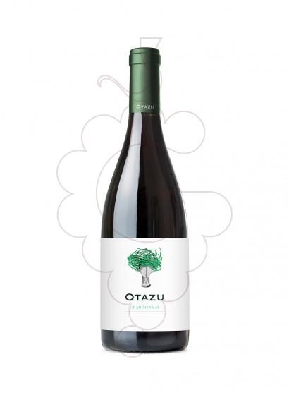 Foto Palacio de Otazu Chardonnay vi blanc