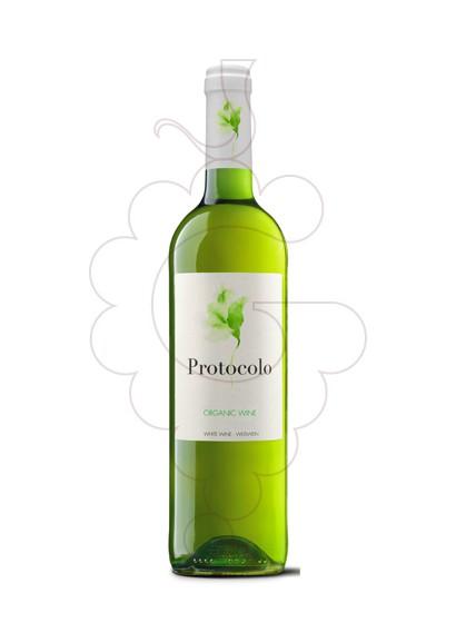 Foto Protocolo Blanc Orgànic vi blanc