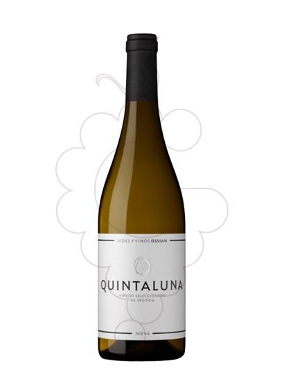 Foto Quintaluna de Ossian  vi blanc
