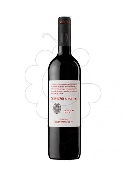 Foto Scala Dei vi negre
