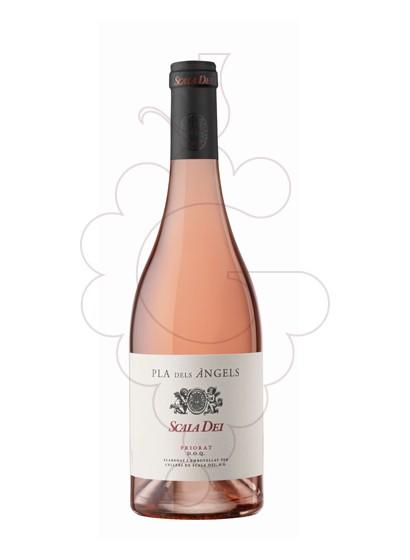Foto Scala Dei Pla dels Àngels vi rosat
