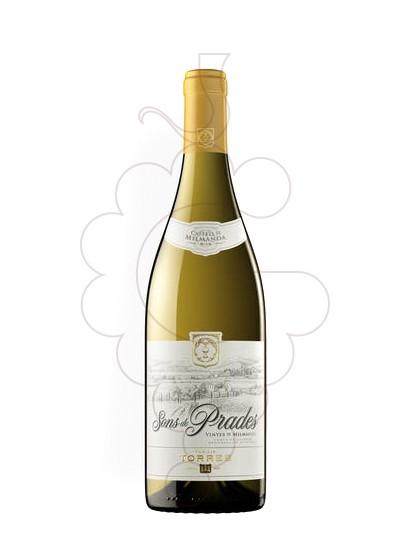 Foto Sons de Prades vi blanc