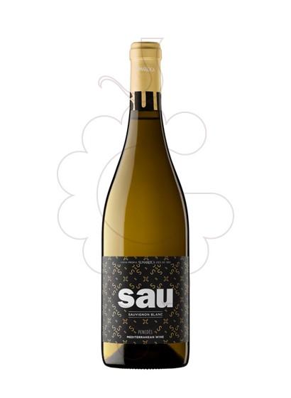 Foto Sumarroca Blanc Sauvignon vi blanc