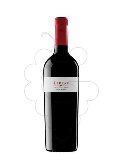 Foto Sumarroca Terral  vi negre
